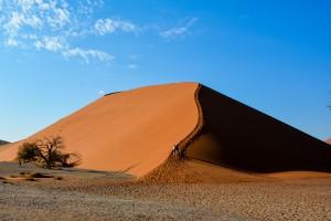 Dune 45 (1 av 1)